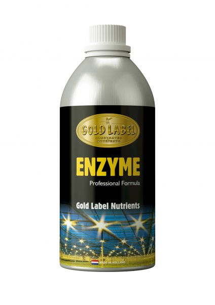Gold Label Enzyme