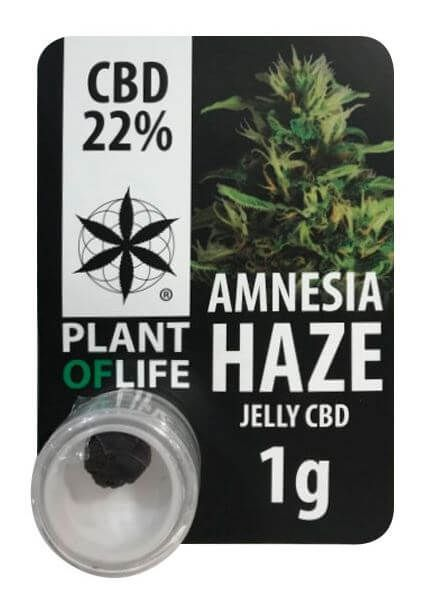 Amnesia Haze, 22% CBD 1g