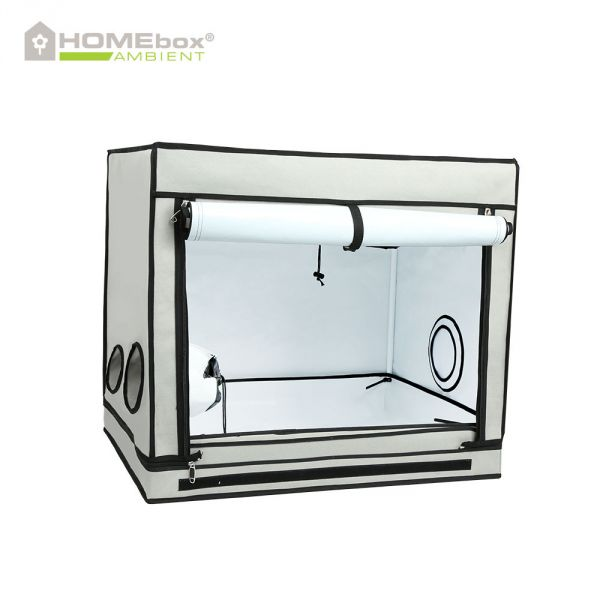 HOMEbox Ambient R80S (80x60x70)