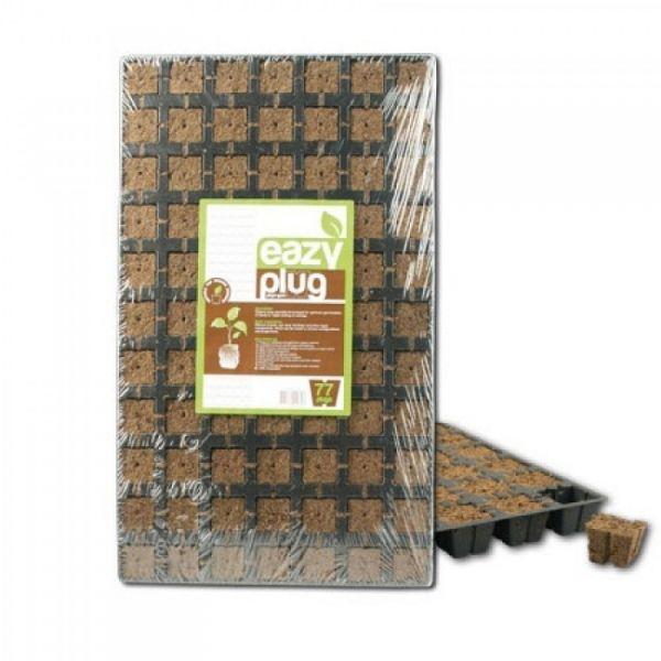 Eazy Plug Stecklingsblöcke - 77 Stück - 3,5 x 3,5 cm